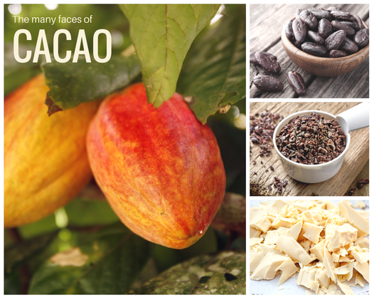 The many faces of cacao