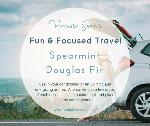 Vanessa Jean's Fun & Focused travel blend with Spearmint, Douglas Fir essential oils