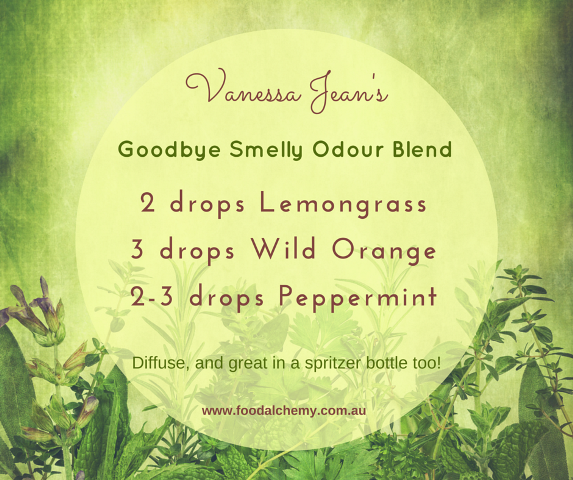 Goodbye Smelly Odour Blend essential oil reference: Lemongrass, Wild Orange, Peppermint