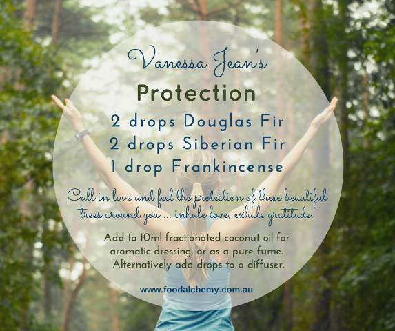 Protection essential oil reference: Douglas Fir, Siberian Fir, Frankincense